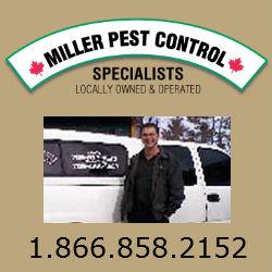 Miller Pest hp